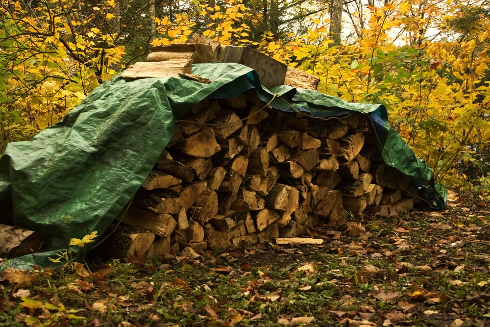 A tarp can be draped over stacked wood during wet weather, but remove it when it's sunny to avoid moisture build-up, so it can continue to dry.