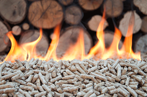 How Are Pellets Made We Have The Answers Quadra Fire Blog