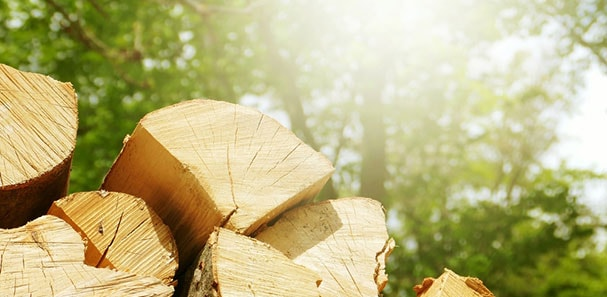 How To Get The All Time Best Firewood: A Guide To Firewood Storage